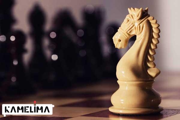نحوه حرکت اسب در بازی شطرنج