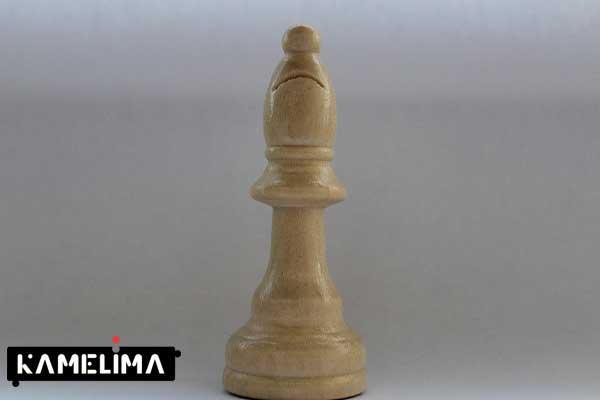 نحوه حرکت فیل در شطرنج