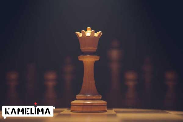 حرکت وزیر در بازی شطرنج